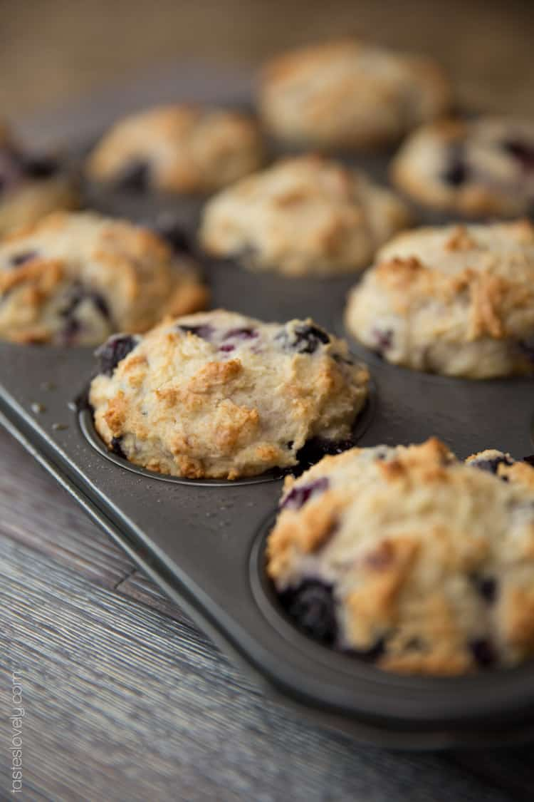 Ultra moist blueberry muffins made with greek yogurt