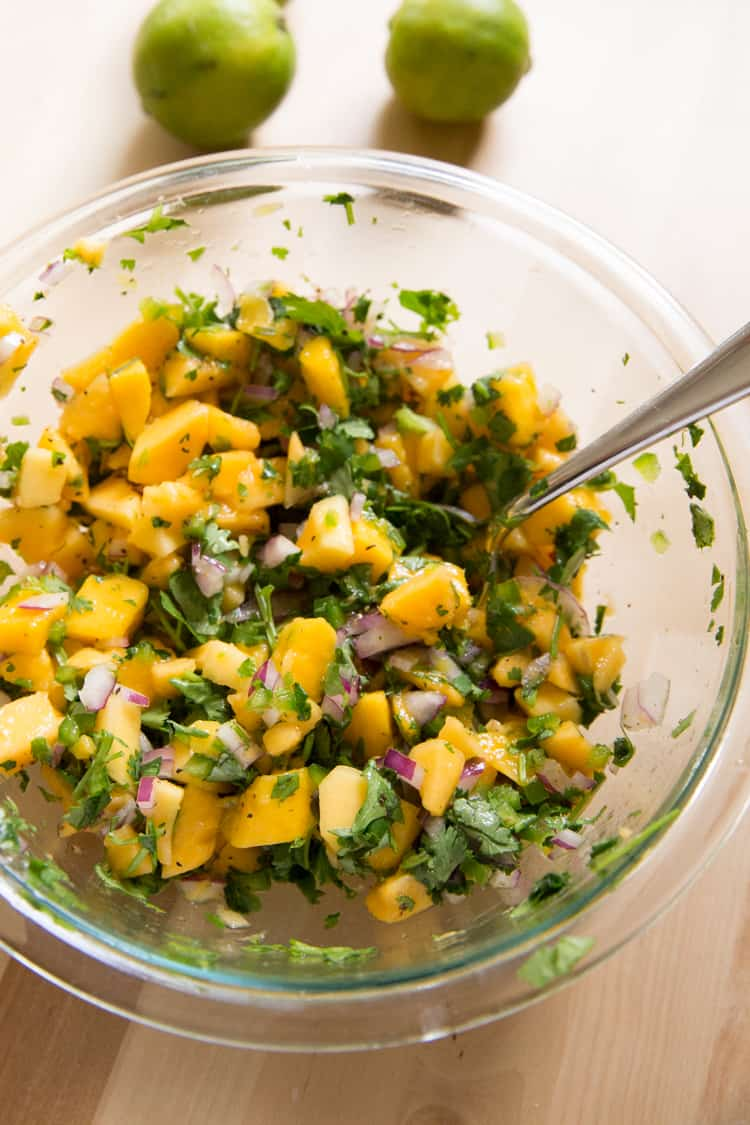 Tropical Mango Papaya Fruit Salsa