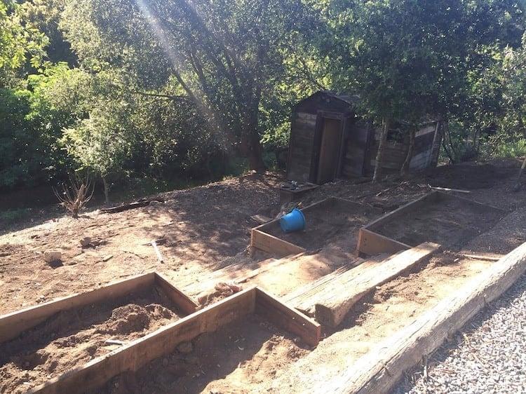 Garden Progess 2