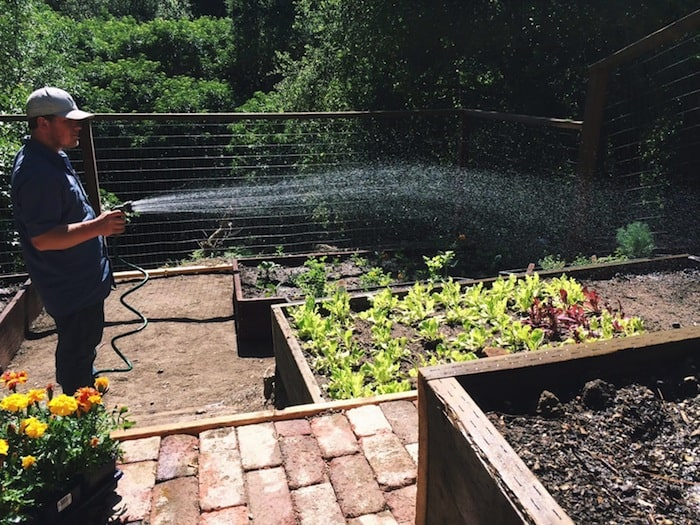 Shawn Watering Our Garden