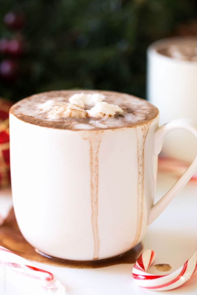 Dairy Free Hot Chocolate with Coconut Whipped Cream (Paleo, Vegan, Gluten Free)