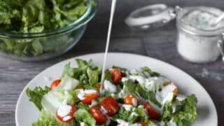 recipe: hidden valley ranch dip recipe with sour cream [30]