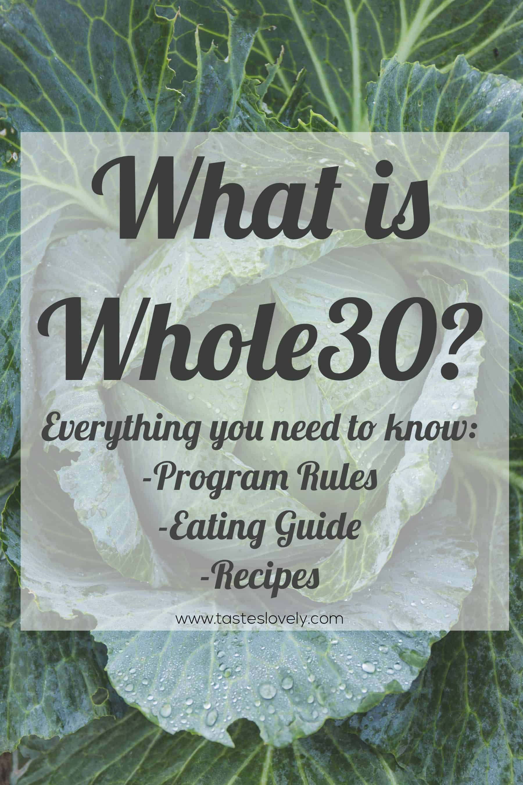 Everything you need to know about the Whole30 diet, including a printable food shopping guide and recipes to get you through your Whole30! #whole30 #whole30diet