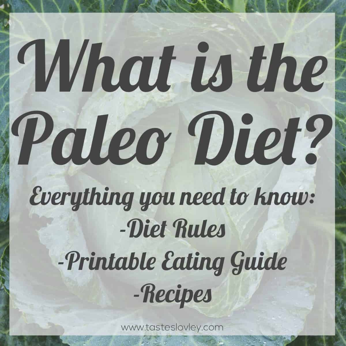 What Is The Paleo Diet Tastes Lovely