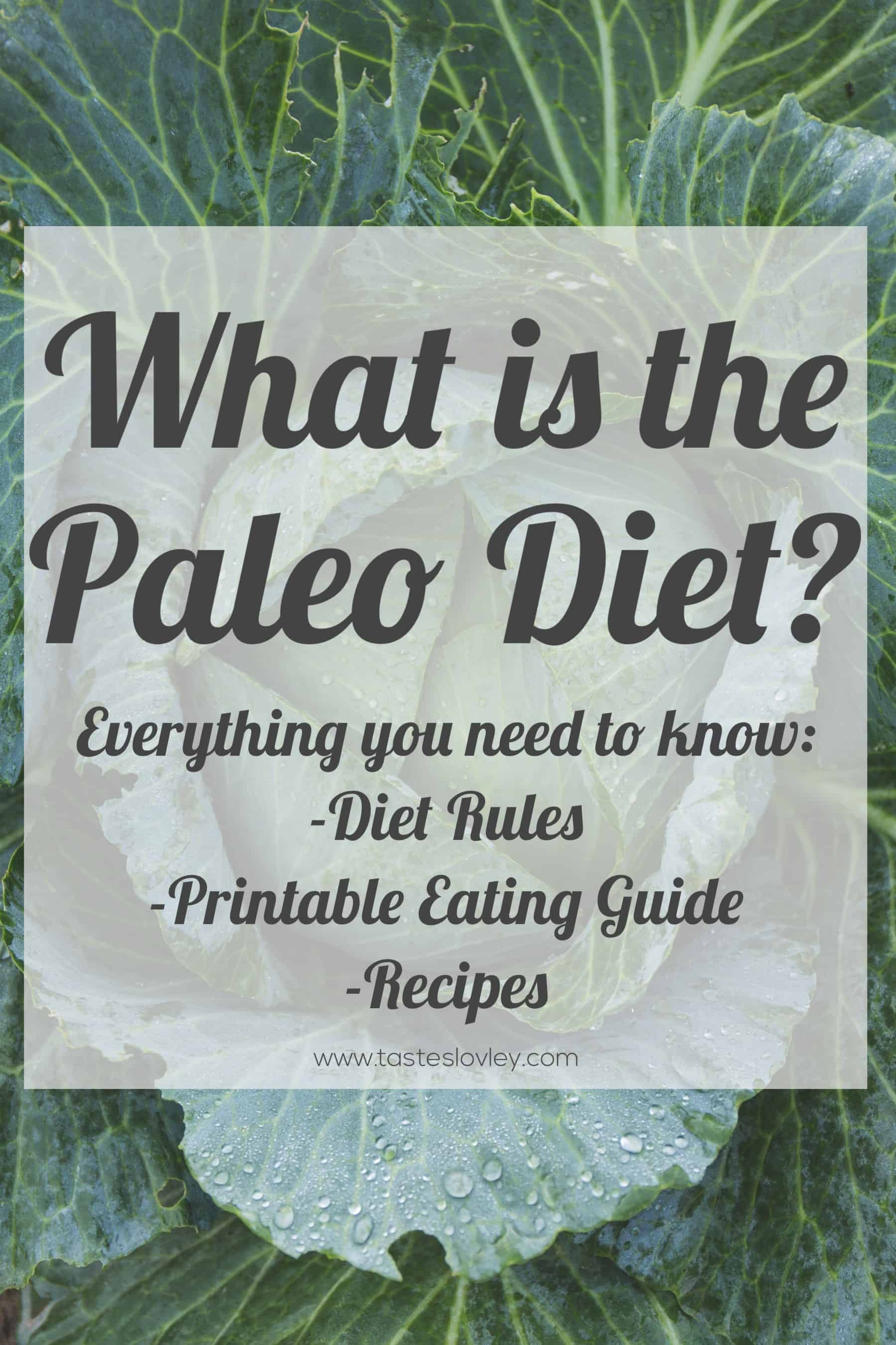What is the Paleo Diet? Everything you need to know including program rules, printable eating guides and free recipes!