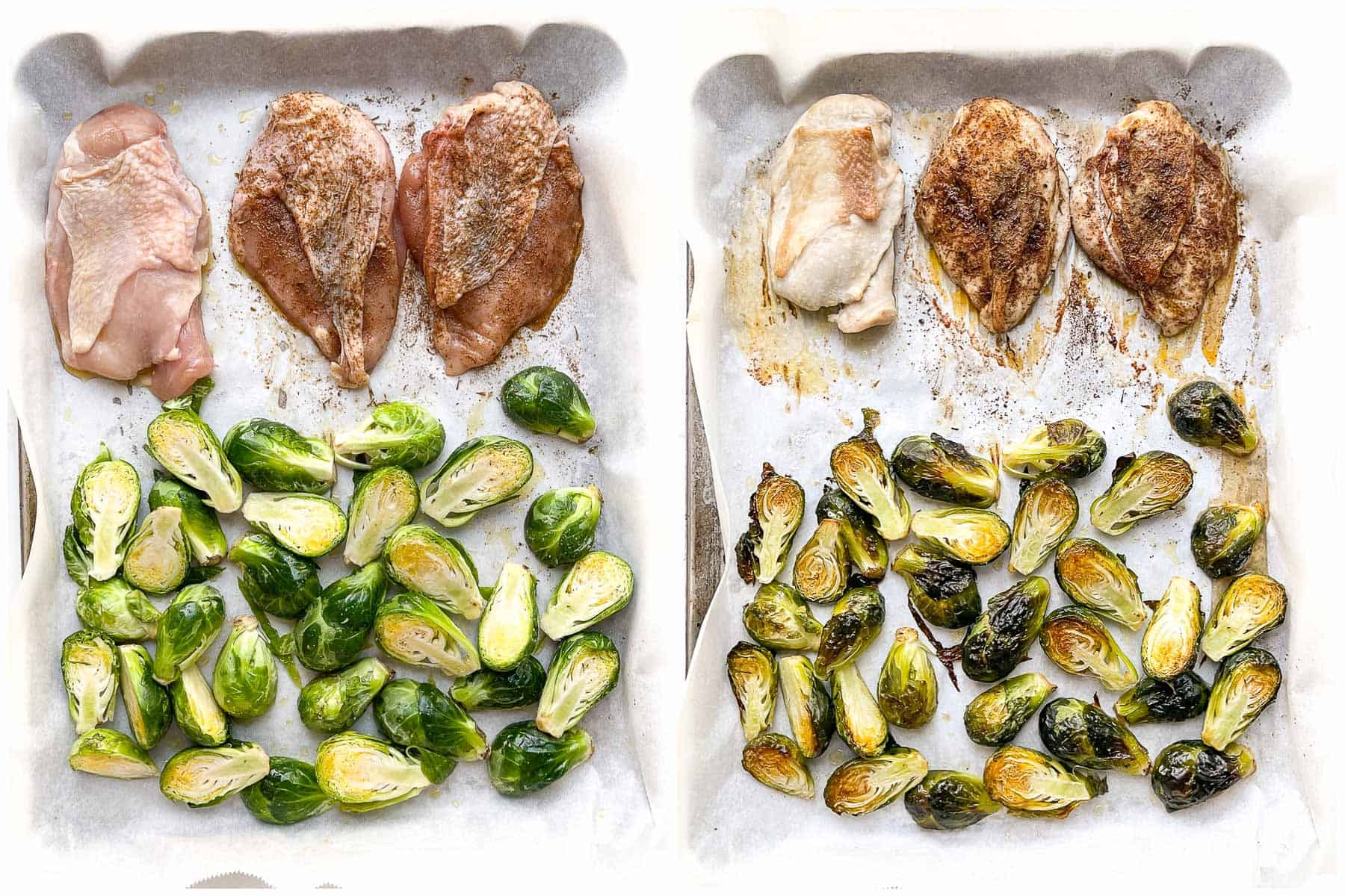 jerk seasoned chicken on a sheet pan with brussels sprouts