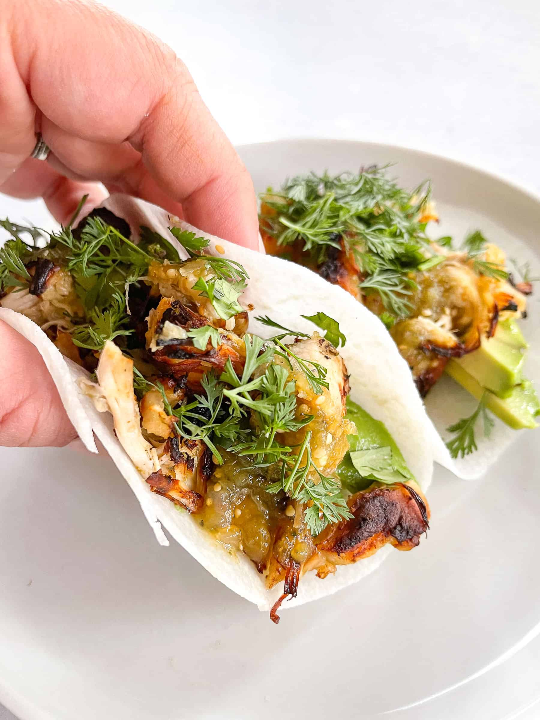 keto crispy verde chicken tacos on jicama wrap with cilantro on a white plate with a white background