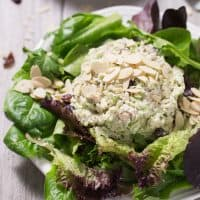 Green Apple & Cranberry Chicken Salad (Paleo, Whole30)