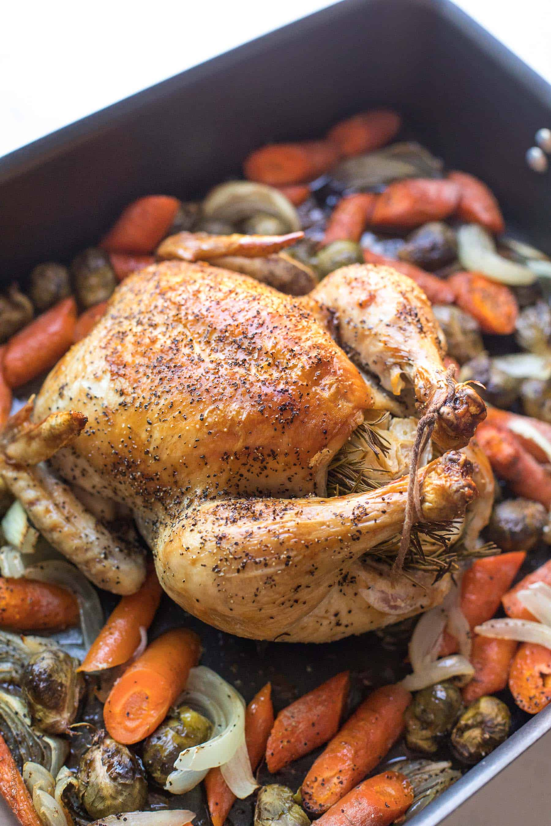Roast chicken in a roasting pan over root vegetables